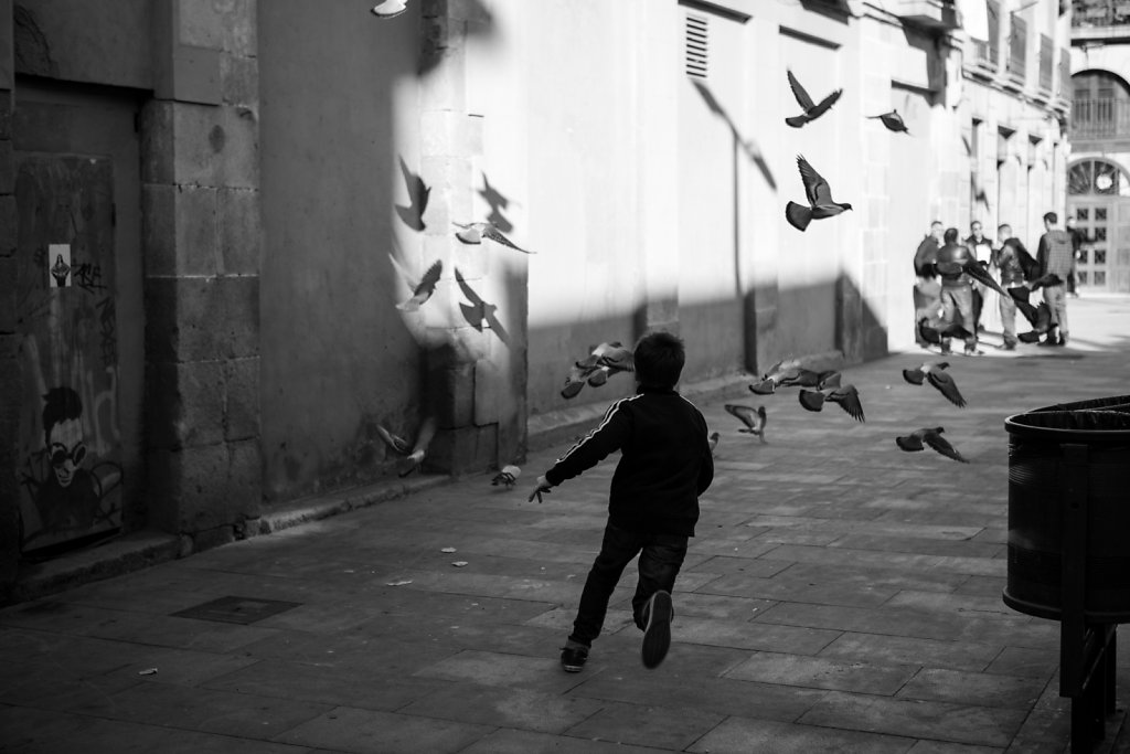 Running for Pigeons